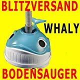 Hayward Bodensauger Whaly